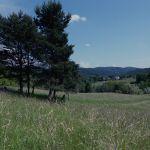 Terrain à Lieuran les Béziers  34290